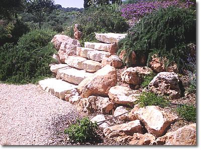 Novagarden plantas en mallorca mantenimiento de jardines Plantas jardin mediterraneo
